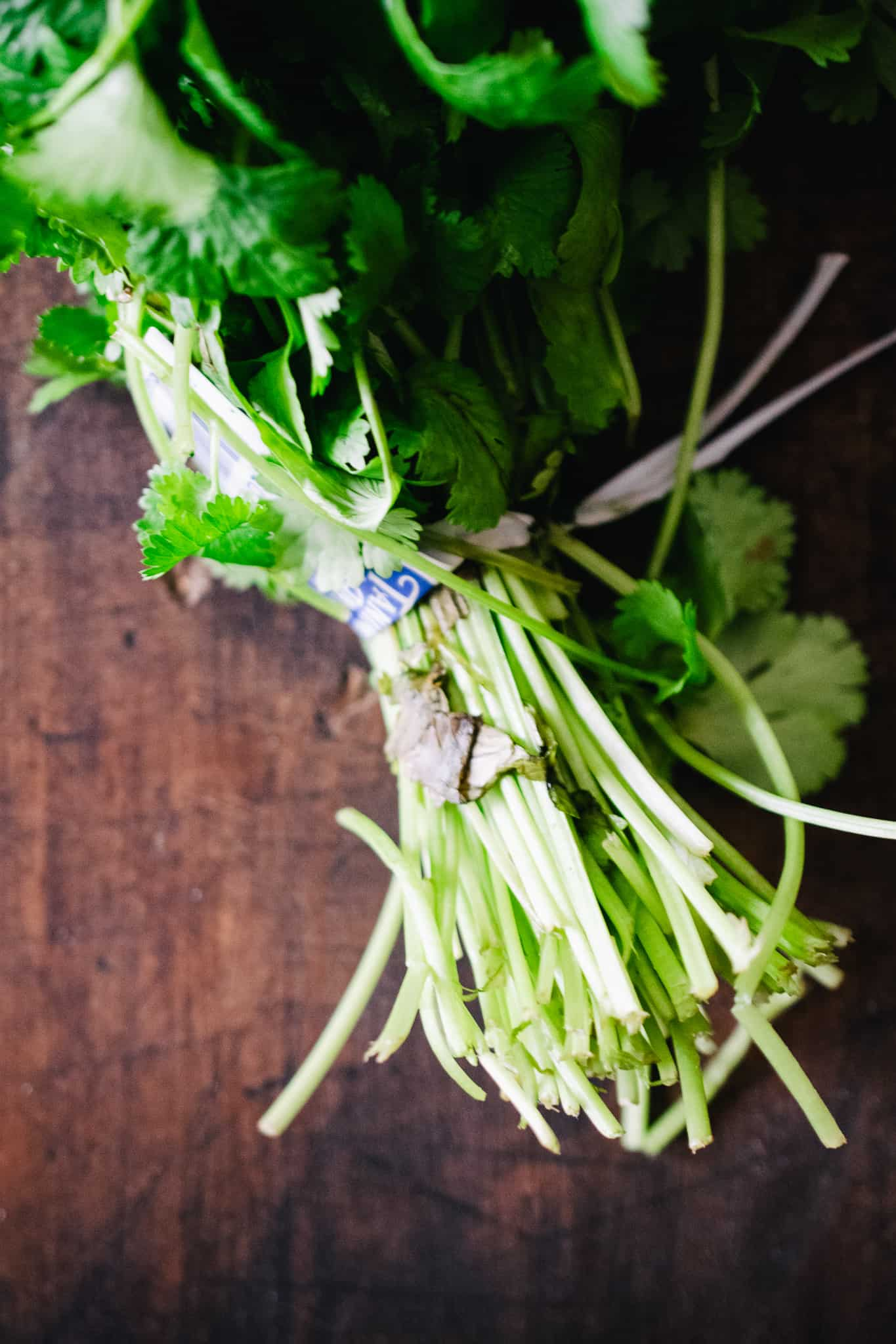 cilantro bunch with twist tie on wooden surface