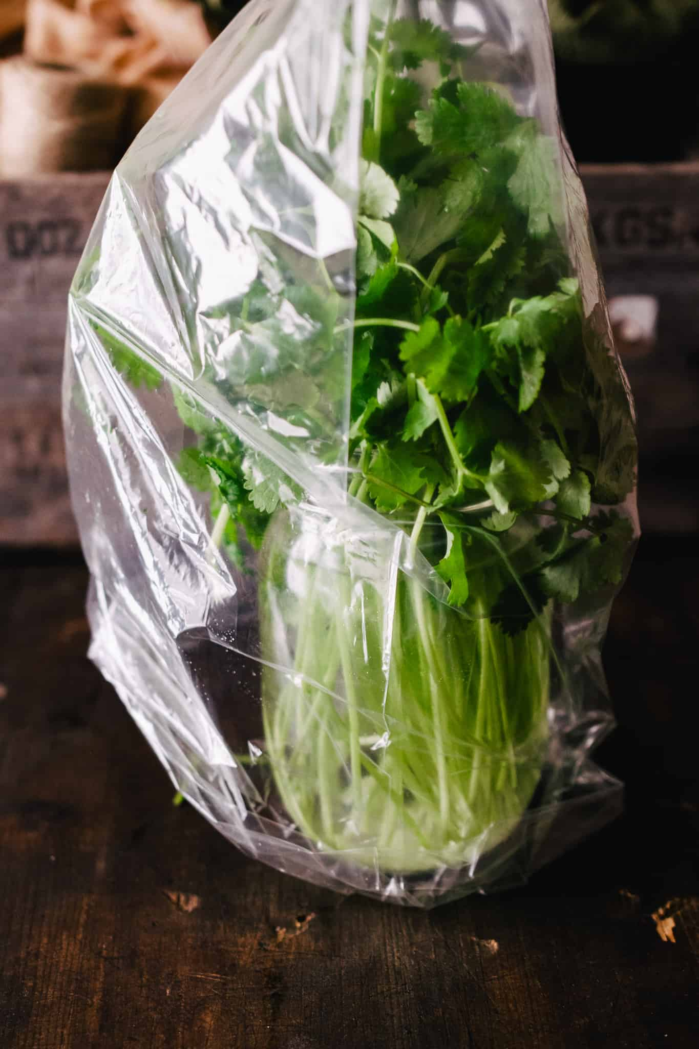 fresh cilantro from the store in a jar of water, covered loosely with plastic bag