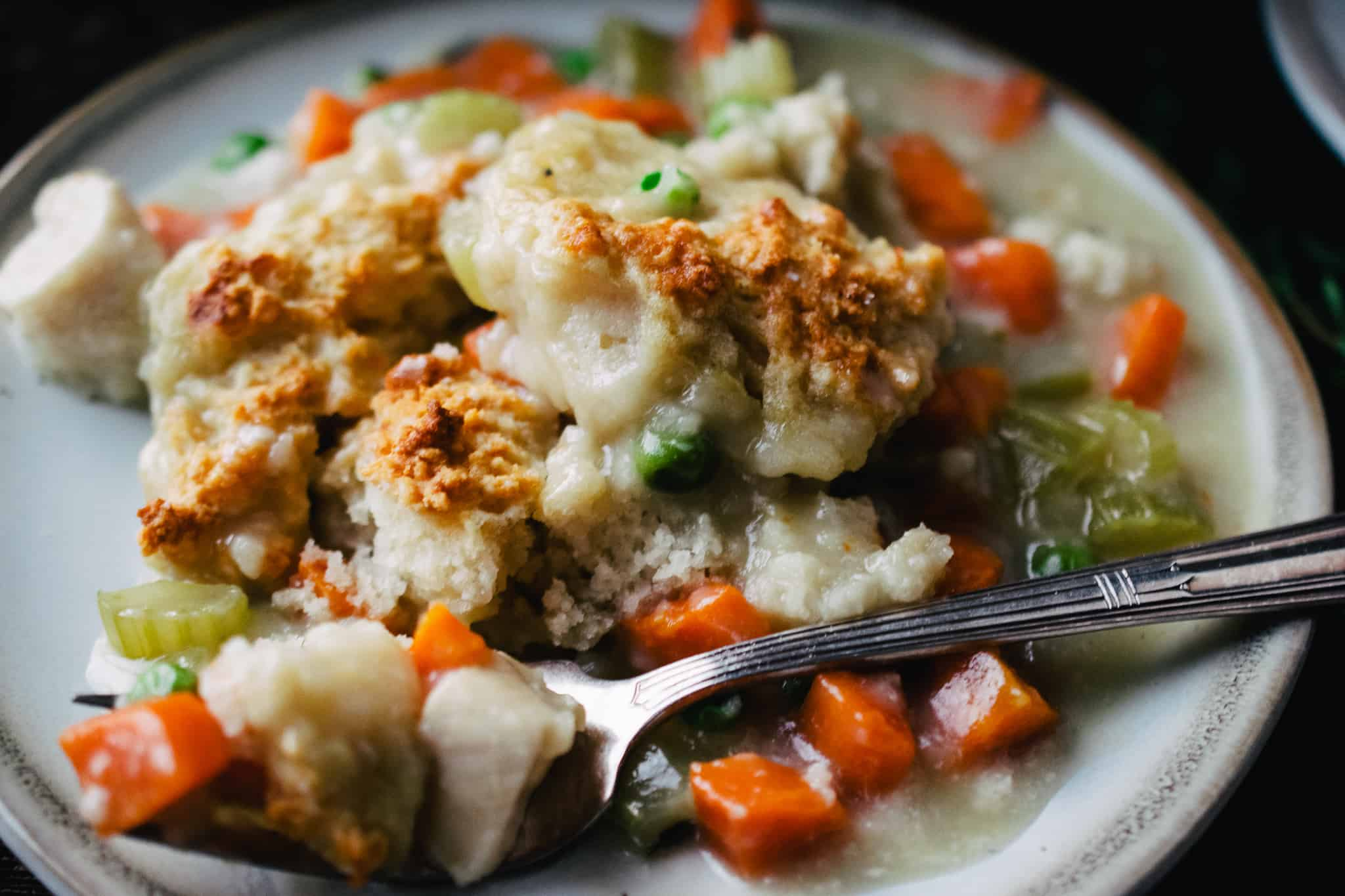 plate of creamy chicken and dumplings